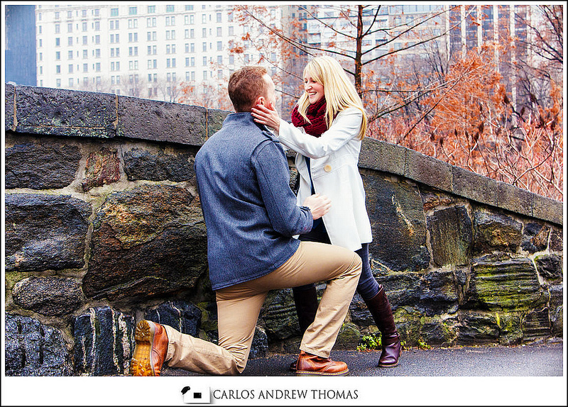 brooklyn engagement photographer, new york photographer, wedding