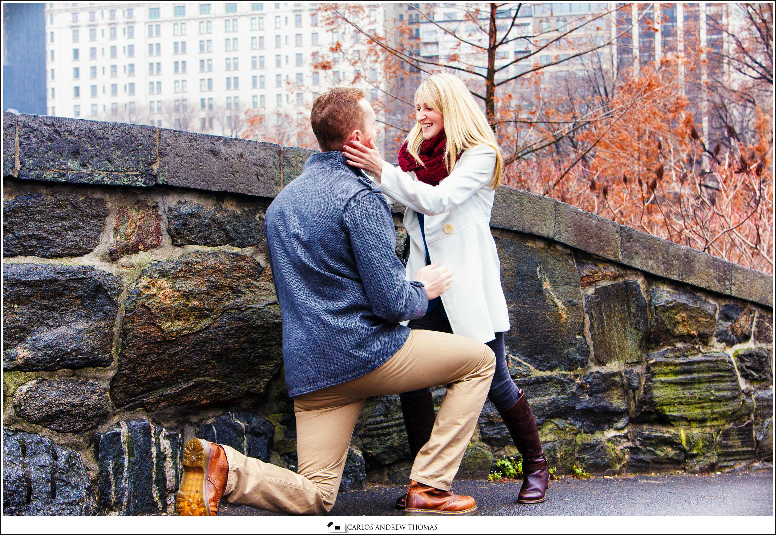 Scott's Proposal in Central Park | NYC